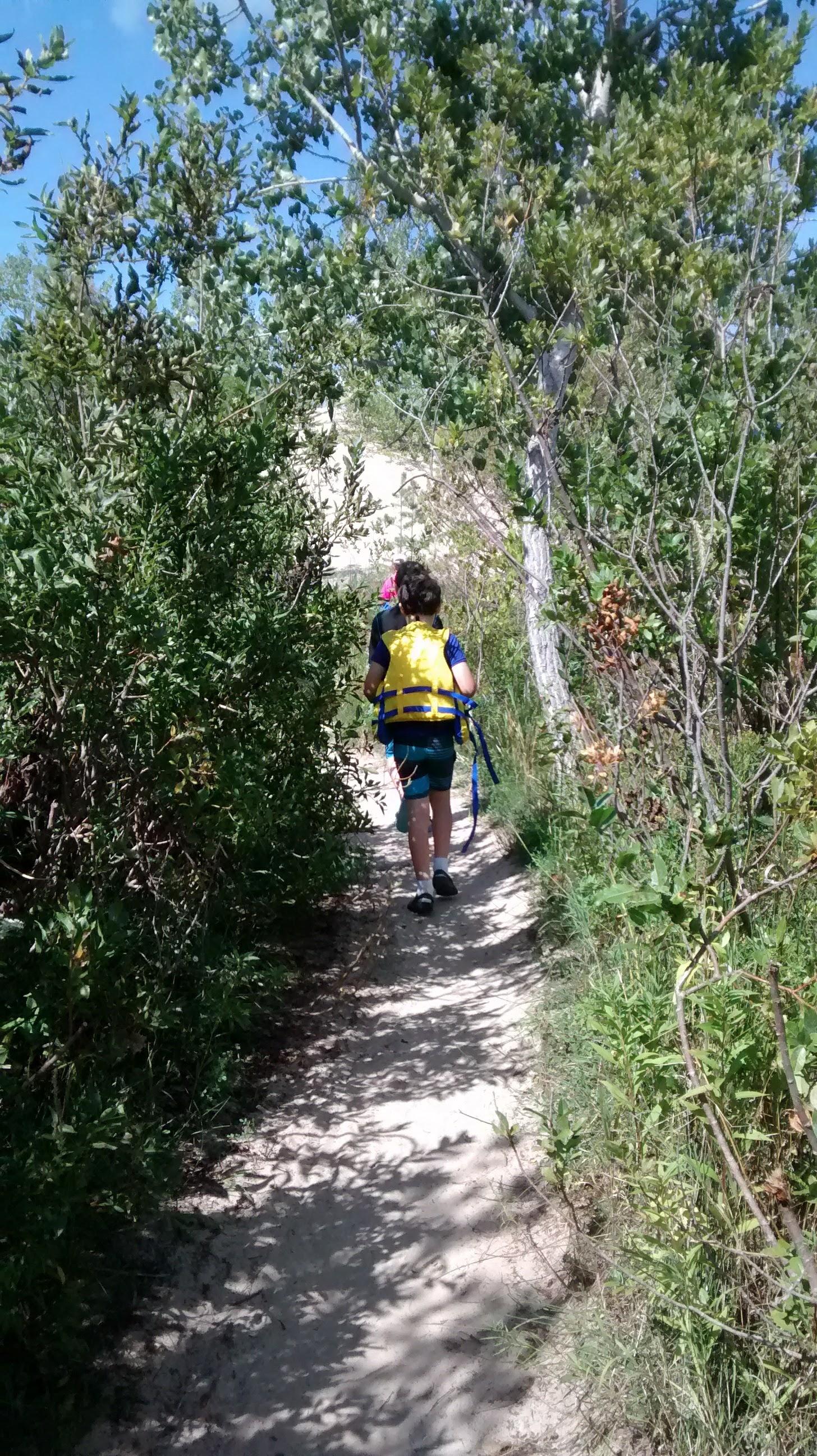 Walking through the foliage